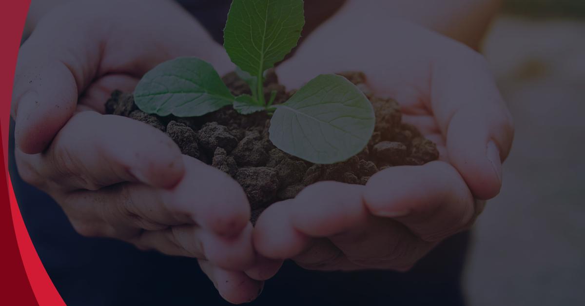 Desafio coletivo: colocar em prática os objetivos do desenvolvimento sustentável